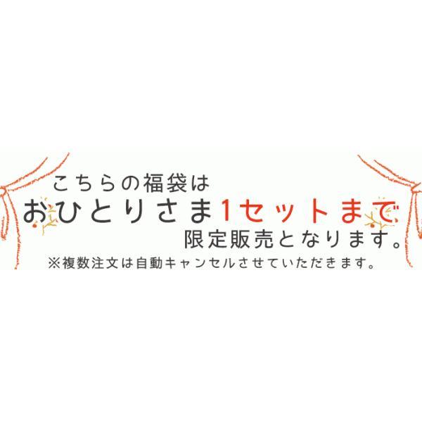 2019年新春福袋 シルク100%ショーツ&インナー5点セット 送料無料 takagi-bodyhints 05