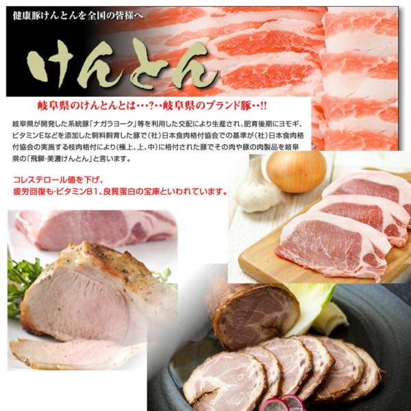 国産豚肉 豚ロース 焼肉 300g  おいしい岐阜県産の豚肉 けんとん豚 バーベキュー BBQ 焼肉 スライス|takagiseiniku|02