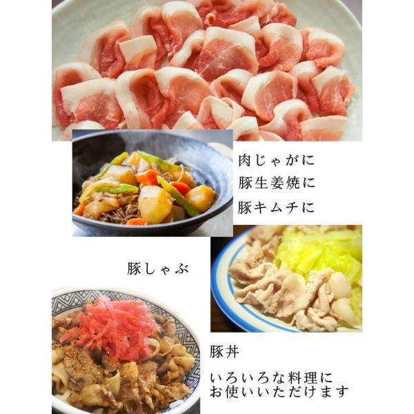 国産豚肉 切り落とし肉 500g おいしい岐阜県産の豚肉  けんとん豚 生姜焼き 豚キムチ すき焼き 炒め物 豚肉|takagiseiniku|03