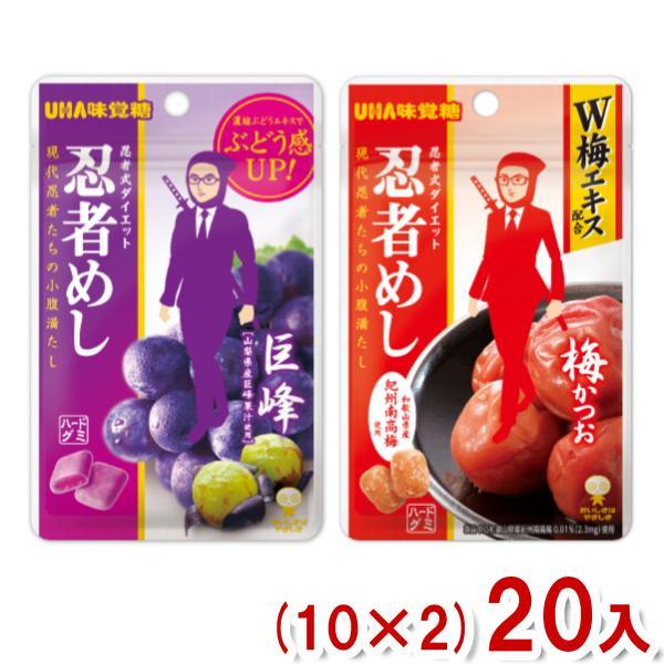味覚糖 旨味シゲキックス 忍者めし (10×2)20入 2つ選んでメール便全国送料無料