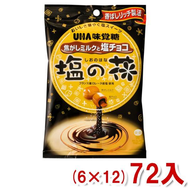 味覚糖 塩の花 焦がしミルクと塩チョコ (6×12)72入 (Y12)(ケース販売) 本州一部送料無料