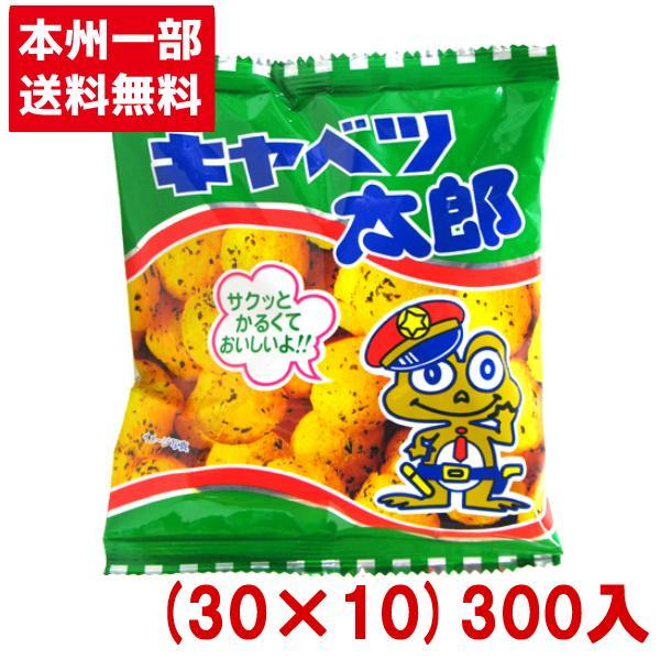 菓道 キャベツ太郎 (30×10)300入 (Y16) 本州一部送料無料