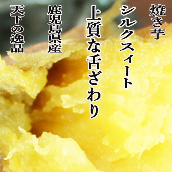 【焼き芋】熊本県産さつまいも シルクスイート 3kg