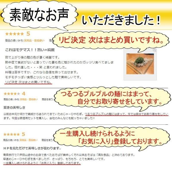 めじゃーひやむぎ お徳用10食入り ほうれん草使用 青森県産りんご繊維入り 常温60日間保存可能 夏季限定 送料無料|takasago-mejya|10