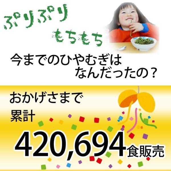 めじゃーひやむぎ お徳用10食入り ほうれん草使用 青森県産りんご繊維入り 常温60日間保存可能 夏季限定 送料無料|takasago-mejya|02
