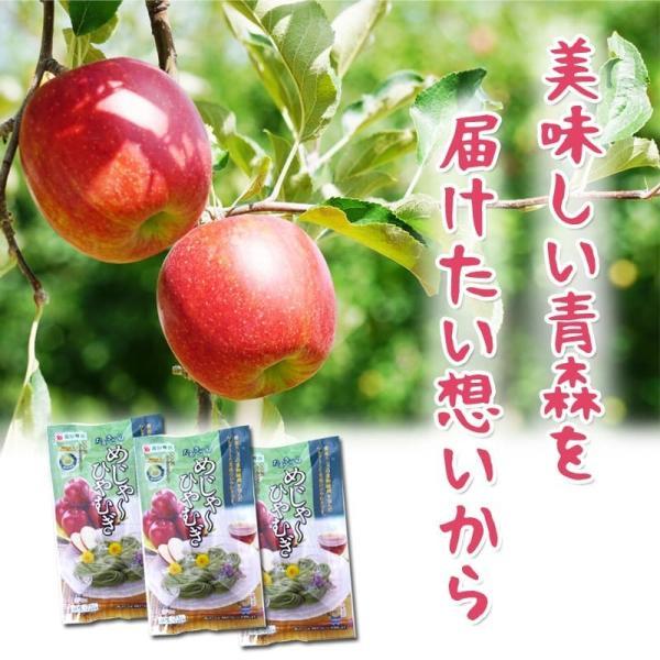 めじゃーひやむぎ お徳用10食入り ほうれん草使用 青森県産りんご繊維入り 常温60日間保存可能 夏季限定 送料無料|takasago-mejya|05