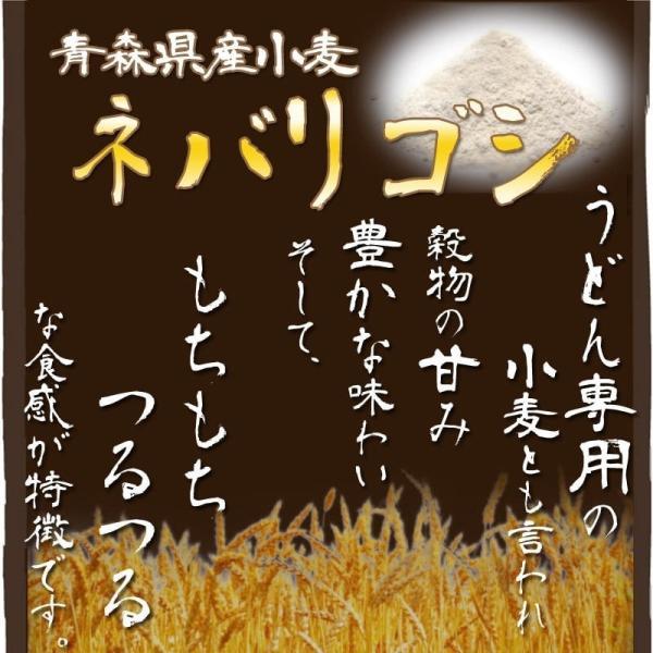 送料無料 青森なべ焼うどん 10食 常温保存 100日 お取り寄せ鍋 セット 天ぷら 麩 付き|takasago-mejya|04
