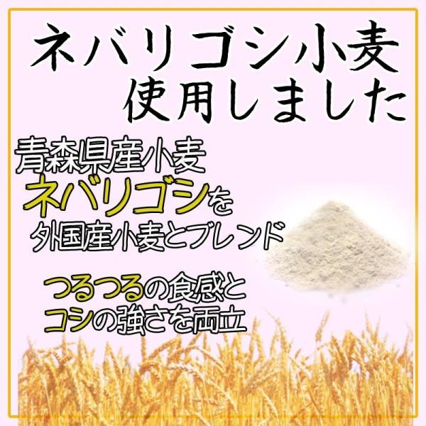 天ぷら鍋焼うどん 1ケース10食 ゆで麺 サクサク 送料無料|takasago-mejya|03
