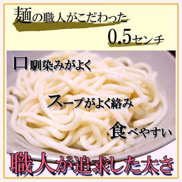 天ぷら鍋焼うどん 1ケース10食 ゆで麺 サクサク 送料無料|takasago-mejya|04