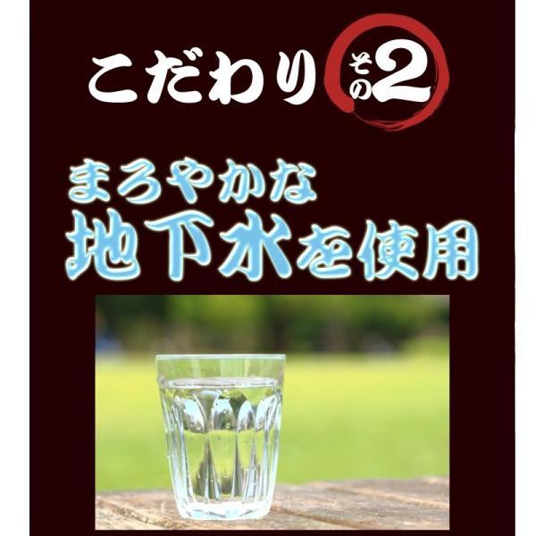天ぷらそば 1ケース 10食 ご当地そば 天ぷら 常温100日間保存 冬季限定 高砂食品|takasago-mejya|04