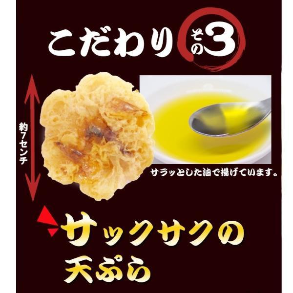 天ぷらそば 1ケース 10食 ご当地そば 天ぷら 常温100日間保存 冬季限定 高砂食品|takasago-mejya|05