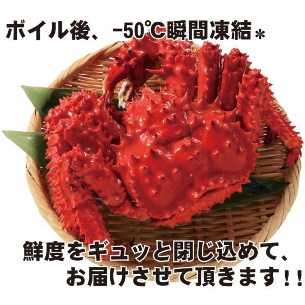 遅れてごめんね 父の日 送料無料 花咲ガニ 750g前後/特大姿 ボイル 花咲 はなさき たらば かに 蟹 お歳暮 贈答 海鮮 ギフト お取り寄せ|takasui|05