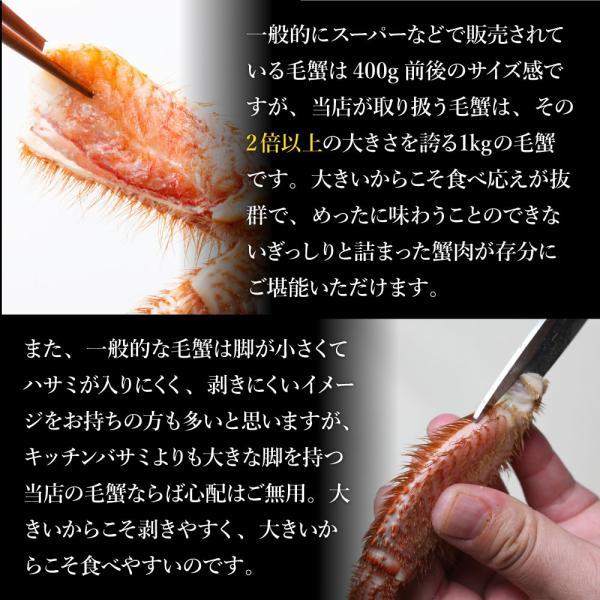\年末配送OK/ お歳暮 ギフト 毛ガニ 1kg 毛蟹 特大 毛がに カニ かに 蟹  ボイル 姿 訳あり じゃありません takasui 08