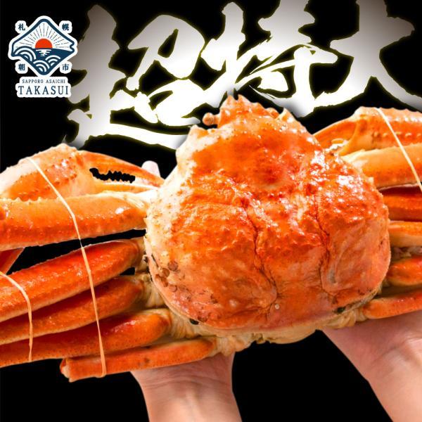 カニ 蟹 かに ズワイガニ ずわいがに 姿 超特大 900g〜950g ボイル ギフト ズワイ蟹 ポイント消化|takasui
