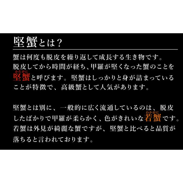 カニ 蟹 かに ズワイガニ ずわいがに 姿 超特大 900g〜950g ボイル ギフト ズワイ蟹 ポイント消化|takasui|07