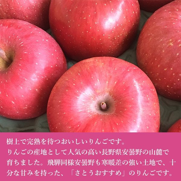送料無料 りんご特秀品 谷本さんこだわりの完熟リンゴ4〜6個入り 2kg箱 早生ふじ シナノスイート他|takayamasatou|03
