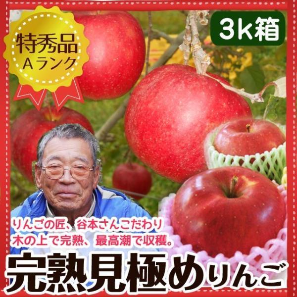 送料無料 りんご特秀品 谷本さんこだわりの完熟リンゴ7〜9個入り 3kg箱 早生ふじ・シナノスイート他|takayamasatou