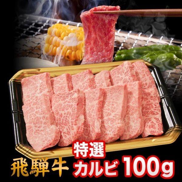 飛騨牛 A5 A4 ランク 牛肉 焼き肉用 ギフト 焼肉用 牛 特選カルビ 100g