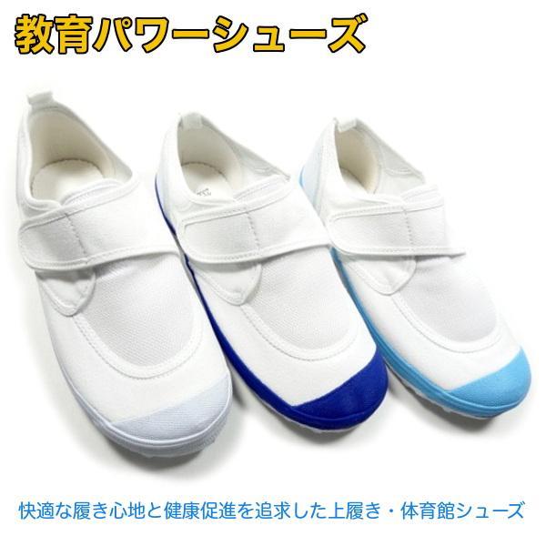 教育パワーシューズ 上履き 子供 幅広 体育館履き 校内履き 上靴 2足で送料無料