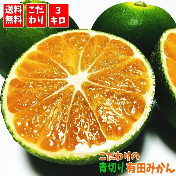 こだわりの青切り有田みかん 3kg(送料無料/極早生みかん)