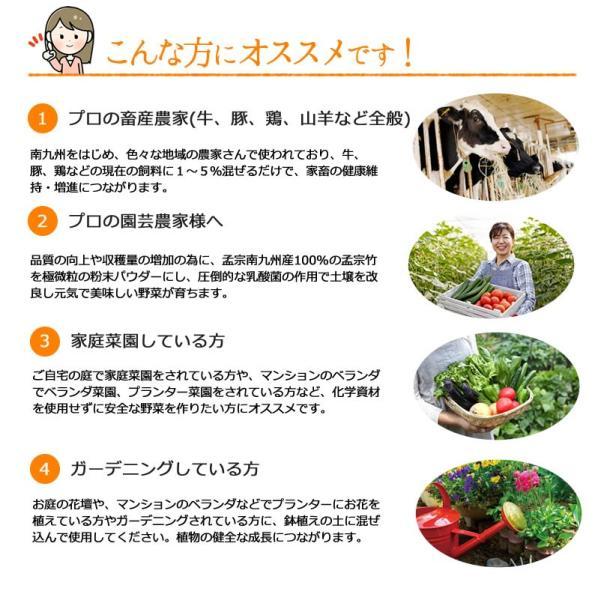 竹粉 竹パウダー エサ・飼料添加物 乳酸菌の力で鶏、牛、豚などのサプリメントに!孟宗ヨーグルト1kg(アルミ真空パック) |takepanda|03