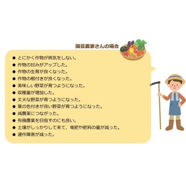 竹粉 竹パウダー エサ・飼料添加物 乳酸菌の力で鶏、牛、豚などのサプリメントに!孟宗ヨーグルト1kg(アルミ真空パック) |takepanda|05