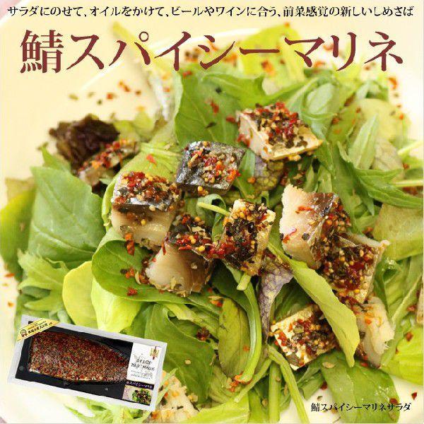 鯖スパイシーマリネ これまでにない新感覚の鯖(さば)のおいしさ takewa