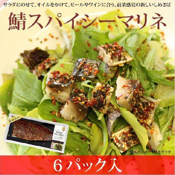 鯖スパイシーマリネ 6枚入 これまでにない新感覚の鯖(さば)のおいしさ|takewa