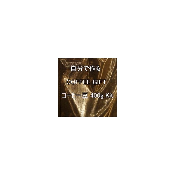 コーヒー ギフト コーヒー豆 400g Kit  ブラジル 竹園ブレンド 自分で作る 送料無料