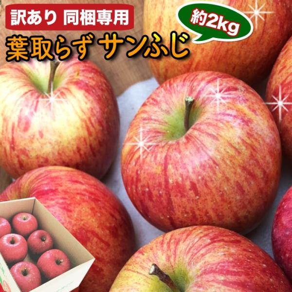 同梱専用 訳あり 葉取らずりんご 青森産 色むら有り サンふじ約2kg(5から8玉前後) 卵と同梱で送料無料 ジュース 蜜入り リンゴ takkotamagomura