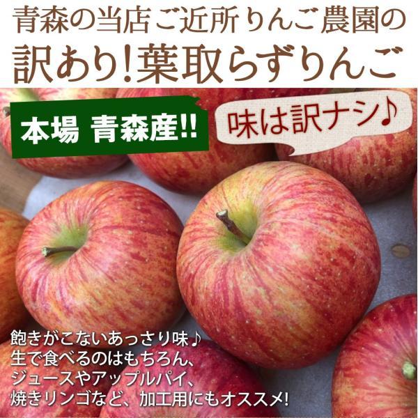 同梱専用 訳あり 葉取らずりんご 青森産 色むら有り サンふじ約2kg(5から8玉前後) 卵と同梱で送料無料 ジュース 蜜入り リンゴ takkotamagomura 02