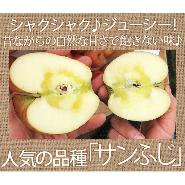 同梱専用 訳あり 葉取らずりんご 青森産 色むら有り サンふじ約2kg(5から8玉前後) 卵と同梱で送料無料 ジュース 蜜入り リンゴ takkotamagomura 05
