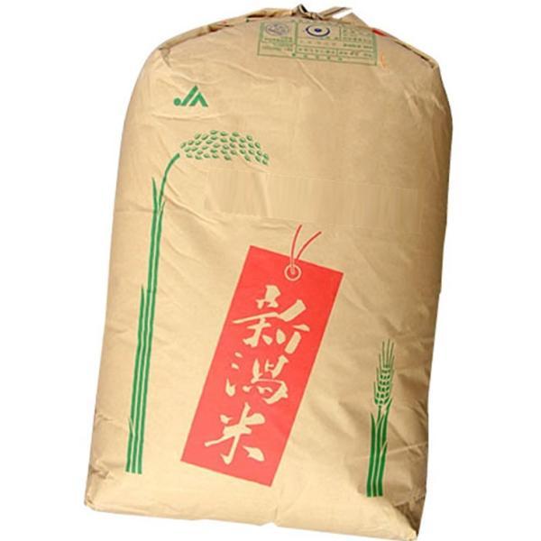 【早期予約キャンペーン9/21迄】令和三年度米 一等米新潟県産コシヒカリ 玄米30kg