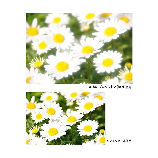 Kenko レンズフィルター MC プロソフトン (B) N 67mm ソフト効果用 197639