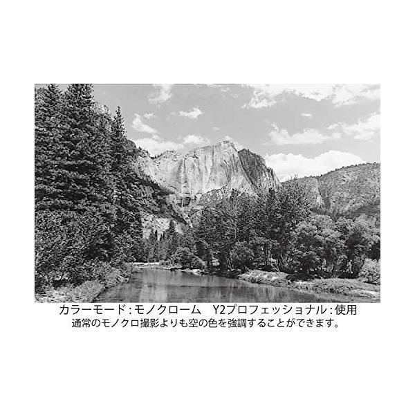 Kenko レンズフィルター MC Y2 プロフェッショナル 55mm モノクロ撮影用 155387