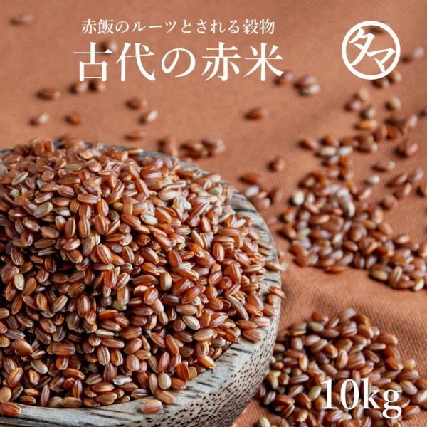 赤米 10kg (250g×40袋) 国産 雑穀 雑穀米 古代米 お米 赤飯 あか米 あかまい 業務用 小分け 送料無料