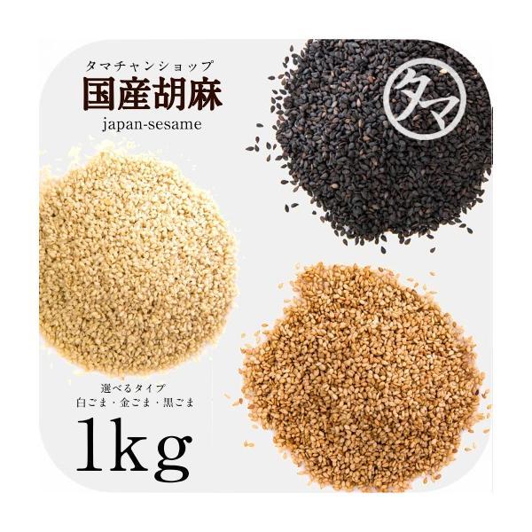 ごま 国産 1kg 国内自給率0.05% ゴマ 金ごま 白ごま 黒ごま 洗い 焙煎 すり 胡麻 日本 セサミン 業務用 送料無料