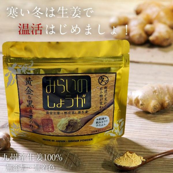 みらいのしょうが 70g 生姜粉末 黄金&熟成蒸し 黒生姜 無添加 乾燥 生姜 しょうが ウルトラ生姜 蒸し生姜 ジンジャー パウダー まるごと乾燥 送料無料