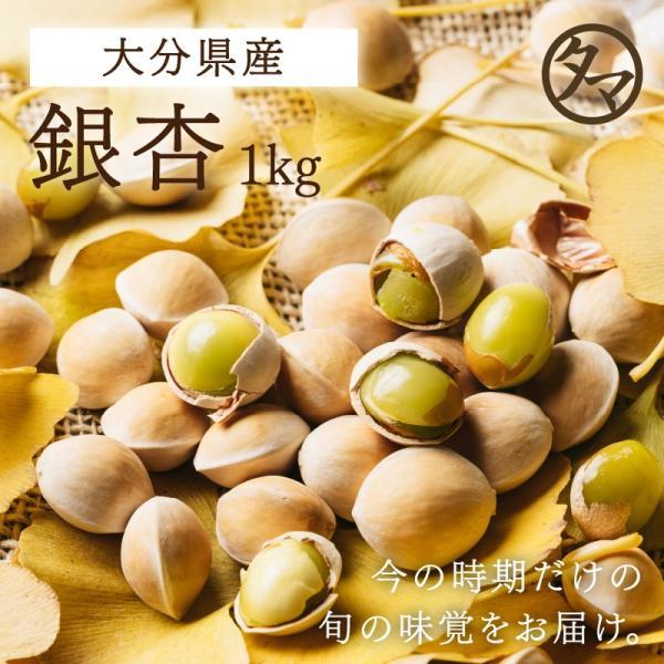 銀杏 1kg 大分産 ぎんなん 大粒 殻付き 国産 つまみ 串焼き 野菜 やさい クール便