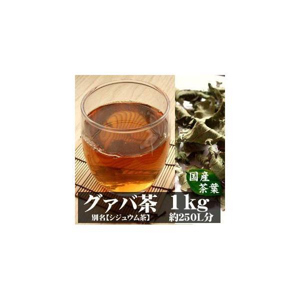 グァバ茶 シジュウム茶 1kg 宮崎産 有機無農薬栽培 完全無添加 無着色 国産茶葉
