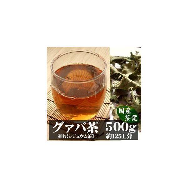 グァバ茶 シジュウム茶 500g 宮崎産 有機無農薬栽培 完全無添加 無着色 国産茶葉
