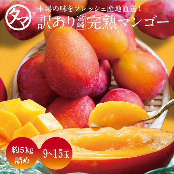 訳あり宮崎完熟マンゴー 5kg マンゴー わけあり くだもの フルーツ 果物 ギフト 贈り物 家庭用 送料無料 見た目ちょいわる 味は絶品