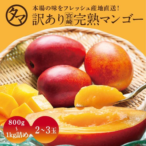訳あり宮崎完熟マンゴー 800〜1000g詰め 2021年 わけあり 完熟 マンゴー 産地直送 くだもの 果物 フルーツ 家庭用 送料無料