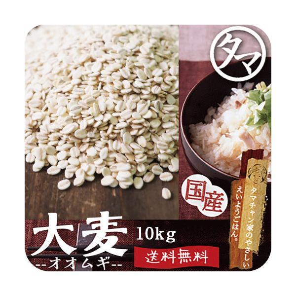 大麦 九州産 10kg(250g×40袋) 押し麦 胚芽押し麦 雑穀 食物繊維 ダイエット 送料無料