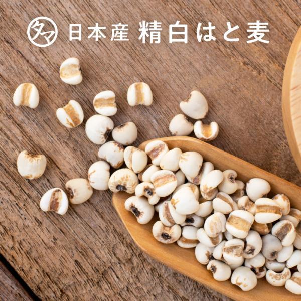 雑穀 はとむぎ 精白 500g 250g×2袋 小分け 九州産 ハトムギ はと麦 穀物 雑穀米 送料無料