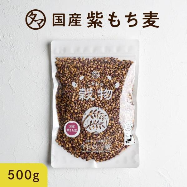 紫もち麦 九州産 500g (250g×2袋) 雑穀 雑穀米 小分け 国産 もち麦 食物繊維 無添加 デブ菌 ダイエット 美容 健康 ダイシモチ ポリフェノール 送料無料