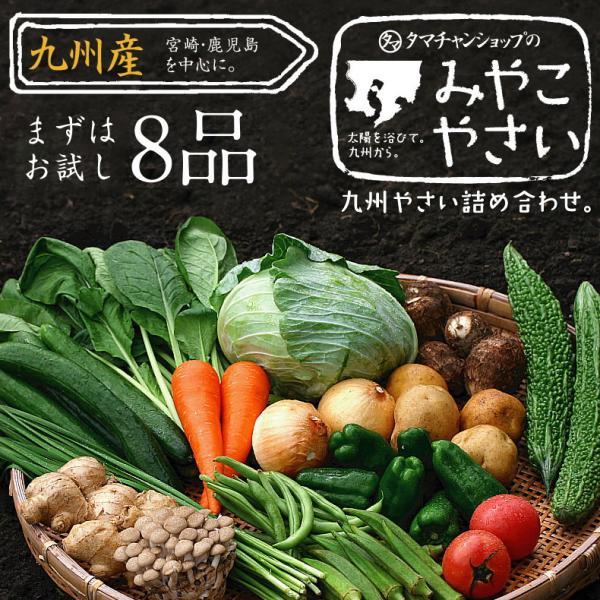 野菜セット 九州産 お試し 8品 やさい 産地直送 野菜 季節 旬 トマト きゅうり かぼちゃ キャベツ 小松菜 ほうれん草 じゃがいも 人参 お取り寄せ 送料無料