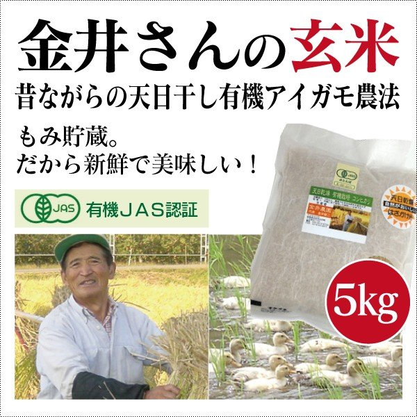 群馬県 金井農園の無農薬有機玄米 - 金井さんの天日干し合鴨農法玄米5kg コシヒカリ有機玄米 昔ながらのはさかけ天日干し・籾(もみ)貯蔵