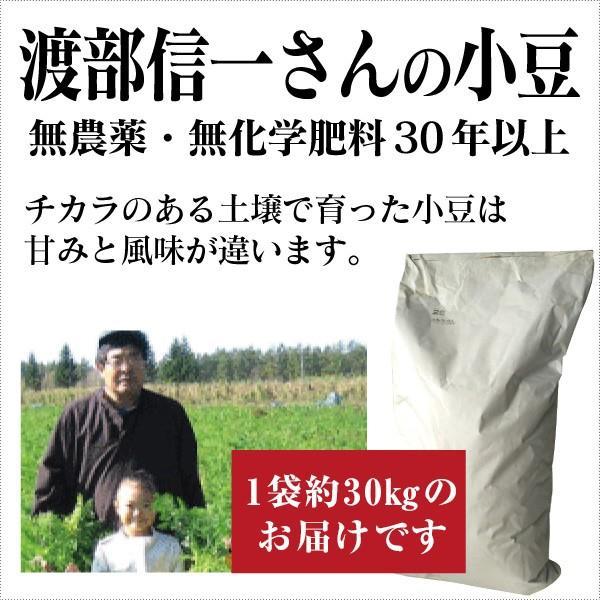 業務用 無農薬小豆 - 渡部信一さんの小豆約30kg(約30kg×1袋) 北海道産 無農薬・無化学肥料栽培30年の美味しい小豆 渡部信一さんは化学薬品とは無縁の生産者