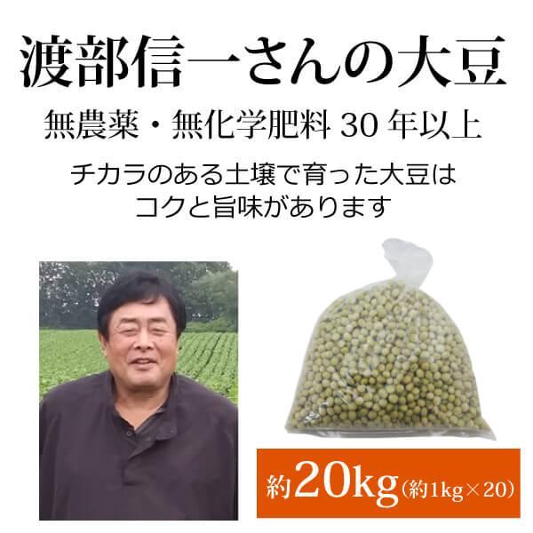 北海道産 無農薬大豆 - 渡部信一さんの大豆約20kg(約1kg×20袋) 無農薬・無化学肥料栽培30年の美味しい大豆 渡部信一さんは化学薬品とは無縁の生産者